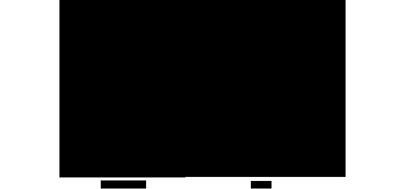 Frame Scheme