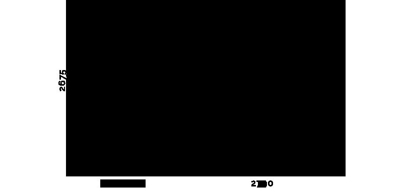 Frame XXL Scheme